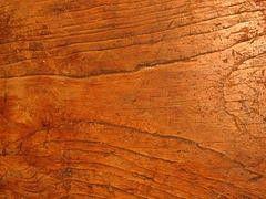 Wie Man Unbehandeltes Holz Richtig Pflegt Wie Mans Macht